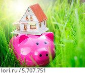 Свинья копилка и игрушечный домик в зелёной траве. Стоковое фото, фотограф yarruta / Фотобанк Лори