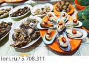 Купить «Морепродукты на прилавке в магазине. Гонконг», фото № 5708311, снято 12 апреля 2013 г. (c) Дмитрий Калиновский / Фотобанк Лори