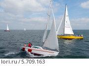 Яхты на воде под парусом рассекают водные просторы. Редакционное фото, фотограф Svet / Фотобанк Лори