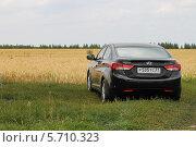 Черный автомобиль у золотистого поля в деревне (2013 год). Редакционное фото, фотограф Дмитрий Романенко / Фотобанк Лори
