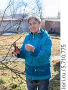 Купить «Пожилая симпатичная женщина обрезает плодовые деревья на даче», фото № 5710775, снято 10 марта 2014 г. (c) Марина Славина / Фотобанк Лори
