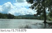 Река Катунь. Стоковое видео, видеограф Липунов Леван / Фотобанк Лори