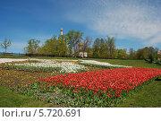 Купить «Парк около церкви Ильи Пророка на Большой Черкизовской улице в Москве», эксклюзивное фото № 5720691, снято 2 мая 2012 г. (c) lana1501 / Фотобанк Лори