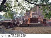 Индия. Буддистский университет Наланда. Стоковое фото, фотограф Staryh Luiba / Фотобанк Лори