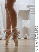Купить «Ноги балерины в пуантах», фото № 5728955, снято 6 марта 2013 г. (c) Losevsky Pavel / Фотобанк Лори