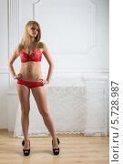 Купить «Стройная привлекательная девушка в красном кружевном белье и черных туфлях на высоком каблуке», фото № 5728987, снято 6 марта 2013 г. (c) Losevsky Pavel / Фотобанк Лори