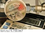 Счетчик расхода воды и калькулятор (2014 год). Редакционное фото, фотограф Юрий Морозов / Фотобанк Лори