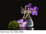 Купить «Узамбарская фиалка в вазочке», фото № 5734783, снято 22 марта 2014 г. (c) Ольга Денисова / Фотобанк Лори