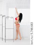 Купить «Красивая девушка в красном нижнем белье», фото № 5748683, снято 12 апреля 2013 г. (c) Losevsky Pavel / Фотобанк Лори