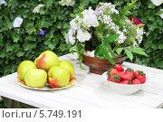 Купить «Тарелки с яблоками, клубникой и цветами на белом столе», фото № 5749191, снято 11 декабря 2012 г. (c) Losevsky Pavel / Фотобанк Лори