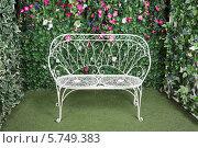 Купить «Красивая садовая скамейка около живой изгороди», фото № 5749383, снято 13 января 2013 г. (c) Losevsky Pavel / Фотобанк Лори
