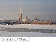 Купить «Петропавловская крепость (собор) и река Нева зимой в морозный день, Санкт-Петербург», фото № 5773975, снято 27 января 2011 г. (c) Смелов Иван / Фотобанк Лори