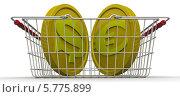 Купить «Бивалютная корзина», иллюстрация № 5775899 (c) WalDeMarus / Фотобанк Лори
