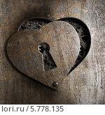 Купить «Металлическое сердце с замочной скважиной», фото № 5778135, снято 3 сентября 2010 г. (c) Андрей Кузьмин / Фотобанк Лори