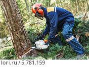 Купить «Лесоруб с пилой в лесу», фото № 5781159, снято 2 апреля 2014 г. (c) Дмитрий Калиновский / Фотобанк Лори