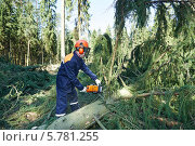 Купить «Рабочий распиливает электропилой дерево в лесу», фото № 5781255, снято 2 апреля 2014 г. (c) Дмитрий Калиновский / Фотобанк Лори