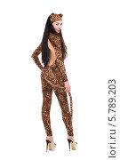 Купить «Девушка-кошка в леопардовом костюме, изолированно на белом фоне», фото № 5789203, снято 22 января 2014 г. (c) Сергей Сухоруков / Фотобанк Лори