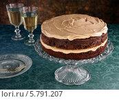 Купить «домашний шоколадный торт на стеклянной подставке», фото № 5791207, снято 16 августа 2018 г. (c) Food And Drink Photos / Фотобанк Лори