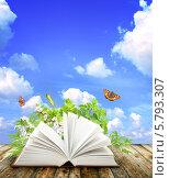 Купить «Книга о природе», фото № 5793307, снято 19 августа 2019 г. (c) Лукиянова Наталья / Фотобанк Лори