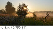 Купить «Восход. Солнце подсвечивает стелющийся по земле туман», фото № 5795911, снято 13 августа 2013 г. (c) Ольга Коцюба / Фотобанк Лори