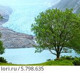 Купить «Вид на озеро Svartisvatnet и ледник Свартисен, Норвегия», фото № 5798635, снято 13 июля 2013 г. (c) Юрий Брыкайло / Фотобанк Лори