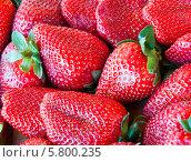 Купить «Фон из ягод свежей клубники», фото № 5800235, снято 12 апреля 2014 г. (c) Екатерина Овсянникова / Фотобанк Лори