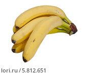 Бананы. Стоковое фото, фотограф Николай Тоцкий / Фотобанк Лори