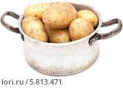 Купить «Старая алюминиевая кастрюля с сырым картофелем», фото № 5813471, снято 26 сентября 2013 г. (c) Tamara Kulikova / Фотобанк Лори