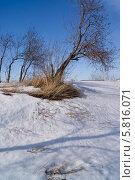 Мартовский пейзаж. Стоковое фото, фотограф Alexander Zholobov / Фотобанк Лори