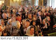 Купить «Люди в праздник Вербное воскресение. Новодевичий монастырь, Москва», эксклюзивное фото № 5823391, снято 12 апреля 2014 г. (c) Дмитрий Неумоин / Фотобанк Лори