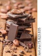 Купить «Темный шоколад и какао-бобы», фото № 5823835, снято 16 апреля 2014 г. (c) Лидия Рыженко / Фотобанк Лори