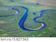Купить «Пойма лесной реки, вид сверху», фото № 5827563, снято 6 июля 2011 г. (c) Владимир Мельников / Фотобанк Лори