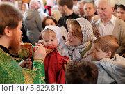 Купить «Причастие в праздник Вербное воскресение. Подмосковье», эксклюзивное фото № 5829819, снято 13 апреля 2014 г. (c) Дмитрий Нейман / Фотобанк Лори