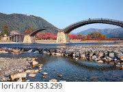 Купить «Мост Kintai в Ивакуни, Япония», фото № 5833299, снято 25 ноября 2007 г. (c) Serg Zastavkin / Фотобанк Лори