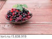 Купить «Ягодный микс из малины и смородины», фото № 5838919, снято 20 июля 2013 г. (c) Александр Самолетов / Фотобанк Лори