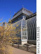 Купить «Здание оранжереи. Ботанический сад в Санкт-Петербурге.», фото № 5839635, снято 20 апреля 2014 г. (c) Ротманова Ирина / Фотобанк Лори