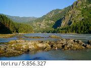 Река Катунь на Алтае,  Сибирь. Стоковое фото, фотограф Alexander Zholobov / Фотобанк Лори