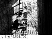 Дверь в лето. Стоковое фото, фотограф Денис Петров / Фотобанк Лори
