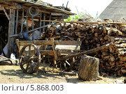 Старинная деревянная телега стоит во дворе (2014 год). Стоковое фото, фотограф Кохан Пётр / Фотобанк Лори