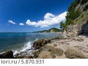 Черноморское побережье. Участок дикого пляжа в Абхазии, вид на Пицундскую бухту и мыс Пицунда. Стоковое фото, фотограф Анна Кудрявцева / Фотобанк Лори
