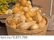 Купить «Продажа кокосовых орехов для пуджи у храма Джаганнатха в Пури», фото № 5871799, снято 8 февраля 2014 г. (c) Вячеслав Беляев / Фотобанк Лори