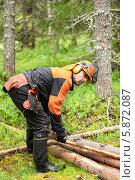 Купить «Лесоруб собирает подготовленные бревна, чтобы вывести их из леса», фото № 5872087, снято 10 июля 2013 г. (c) Валерия Попова / Фотобанк Лори
