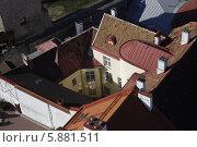 Купить «Таллин. Вид со смотровой площадки церкви Ольвисте», фото № 5881511, снято 3 мая 2014 г. (c) Корчагина Полина / Фотобанк Лори