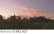 Золотистые закатные облака над вечерним лесом и полем. Стоковое фото, фотограф Сергей Хаменок / Фотобанк Лори