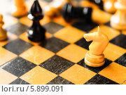Купить «Шахматный конь на доске», фото № 5899091, снято 22 февраля 2014 г. (c) g.bruev / Фотобанк Лори