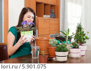 Молодая брюнетка с комнатными цветами в гостиной. Стоковое фото, фотограф Яков Филимонов / Фотобанк Лори