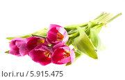 Купить «Букет тюльпанов на белом фоне», фото № 5915475, снято 8 марта 2013 г. (c) Литвяк Игорь / Фотобанк Лори