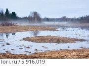 Купить «Утиное болото», фото № 5916019, снято 1 мая 2014 г. (c) Павел Родимов / Фотобанк Лори