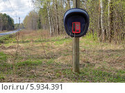 Общественный таксофон около дороги на опушке леса. Стоковое фото, фотограф Игорь Долгов / Фотобанк Лори