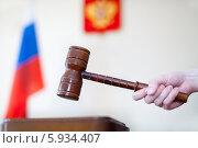 Купить «Российское правосудие. Вердикт», эксклюзивное фото № 5934407, снято 23 мая 2014 г. (c) Александр Тарасенков / Фотобанк Лори